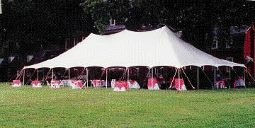 Where to find 40 x 120 POLE TENT, WHITE-EU in Cary