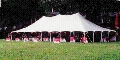 Where to rent 40 x 60   POLE TENT, WHITE-EU in Cary NC