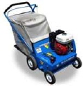 Where to rent POWER RAKE W  BAG, BLUEBIRD in Cary NC