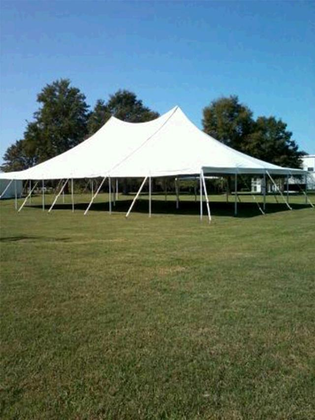 Where to find 40 X 60   POLE TENT, WHITE-TT in Raleigh