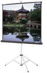 Where to find PROJECTION SCREEN, 40  x 40 in Raleigh
