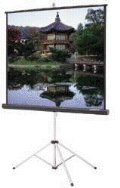 Where to rent PROJECTION SCREEN, 40  x 40 in Cary NC
