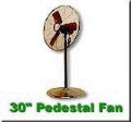 Where to rent FAN, PEDESTAL 30  WHITE EVENT in Cary NC